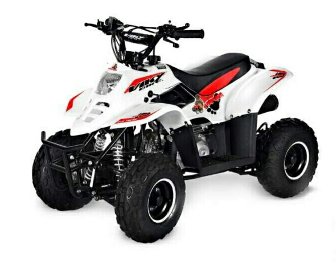 QUAD BIG FOOT  110CC